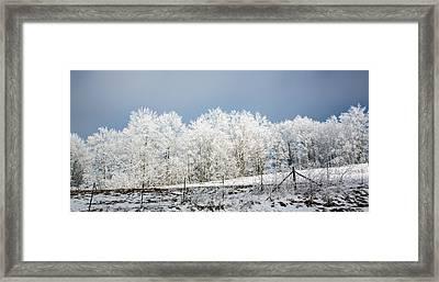 Winter Treeline Panorama Framed Print by John Haldane