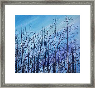 Winter Trees Against A Blue Sky Framed Print