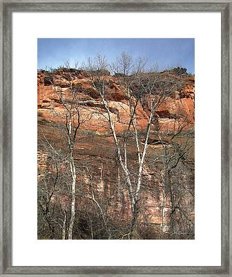 Winter Trees And Red Mountain Framed Print by Julie Magers Soulen