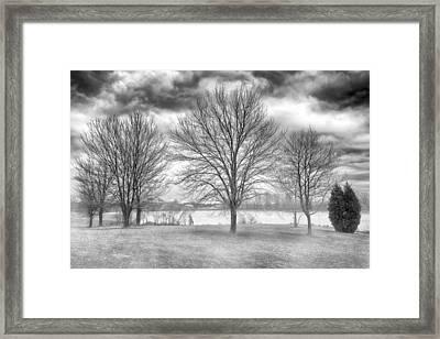 Winter Trees Framed Print by Howard Salmon