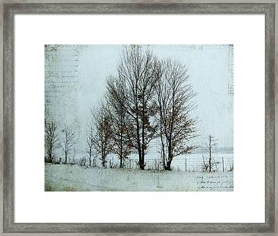 Winter Trees Framed Print by Lesley Jane Smithers