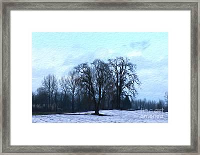 Winter Trees Framed Print by Nur Roy