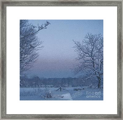 Winter Trees On West Michigan Farm At Sunrise Framed Print