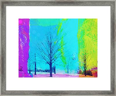Winter Trees Framed Print by Susan Stone