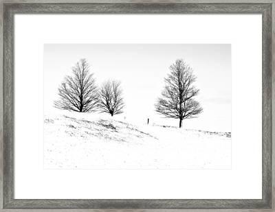 Winter Trinity Infrared Framed Print by Steve Harrington