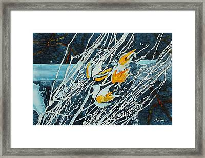 Winter Tulip Pods Framed Print