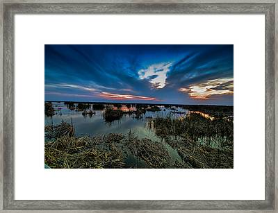 Winter Twilight At Anahuac Wildlife Refuge  Framed Print