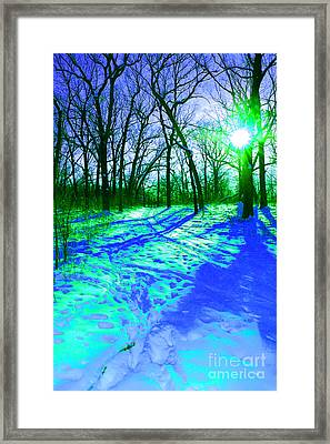 Winter Walk  Framed Print by First Star Art
