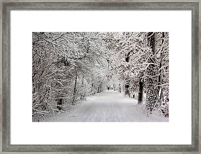Winter Walk In Fairytale  Framed Print