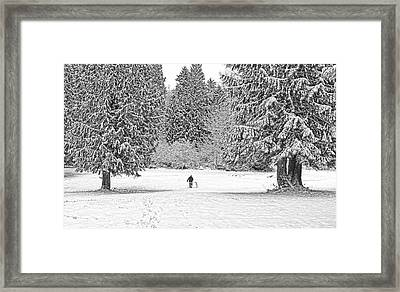 Winter Walk In The Snow  Framed Print by Jennie Marie Schell