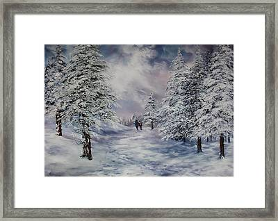 Winter Walk On Cannock Chase Framed Print