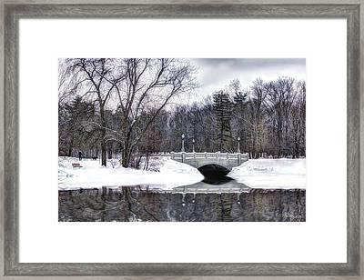 Winter Walk Framed Print by Skip Tribby