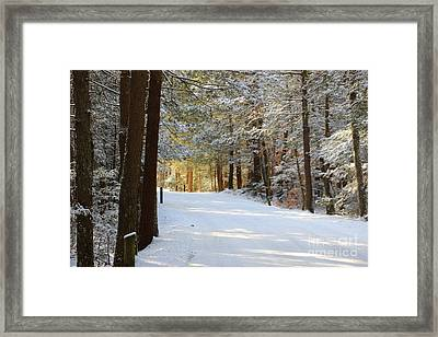 Winter Walking Framed Print
