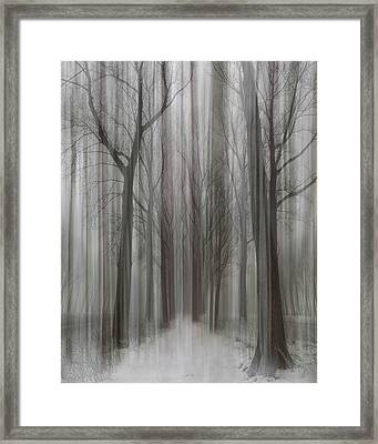 Winter Walz Framed Print