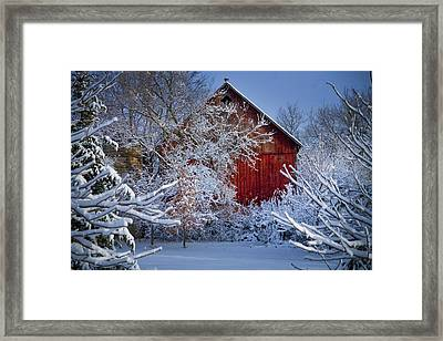 Winter Warmth  Framed Print by Jeff Klingler