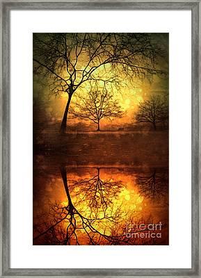 Winter Warmth Framed Print by Tara Turner