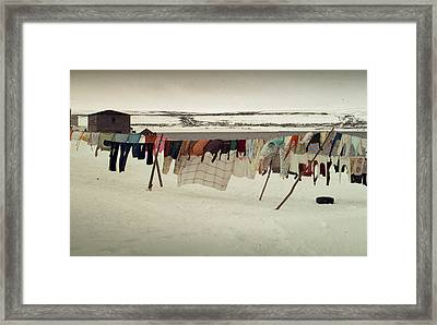 Winter Wash Day Labrador Framed Print by Douglas Pike