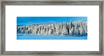 Winter Wawona Meadow Yosemite National Framed Print
