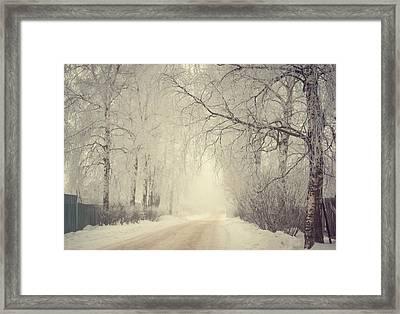 Winter Way Framed Print