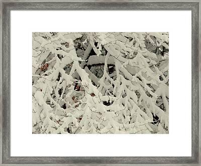Winter Weaving Framed Print