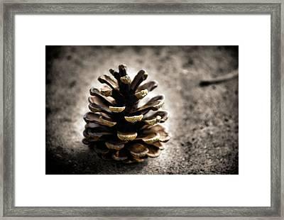 Winter Wheat Framed Print by Karen M Scovill