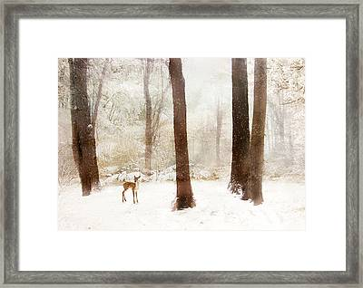 Winter Whimsy Framed Print by Jessica Jenney