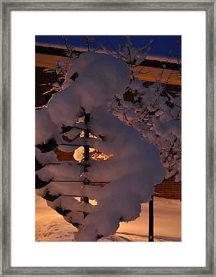 Winter Whirligig Framed Print