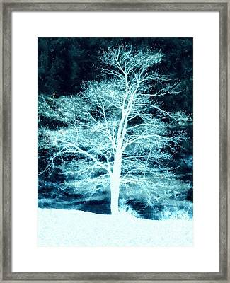 Winter Whispers Through The Night Framed Print