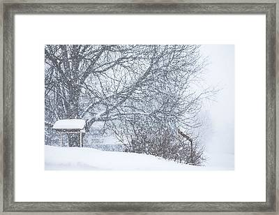 Framed Print featuring the photograph Winter White Out by Robert Clifford