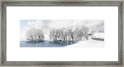 Winter Willows Framed Print by Lori Deiter