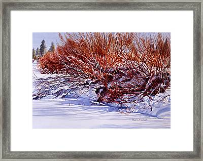 Winter Willows Framed Print by Sharon Freeman