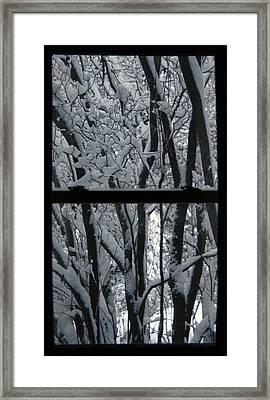 Winter Window Framed Print