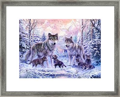 Winter Wolf Family  Framed Print