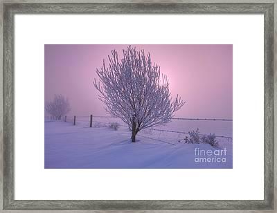 Winter Wonder Land Framed Print