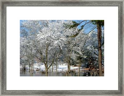 Framed Print featuring the photograph Winter Wonder Land Of Mine by Tanya Tanski