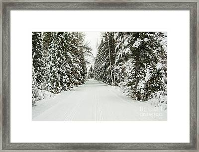 Winter Wonder Land Framed Print