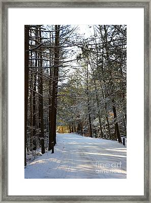 Winter Wonderland At Bigelow Hollow   Framed Print