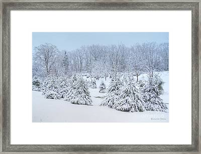 Winter Wonderland In West Virginia Framed Print