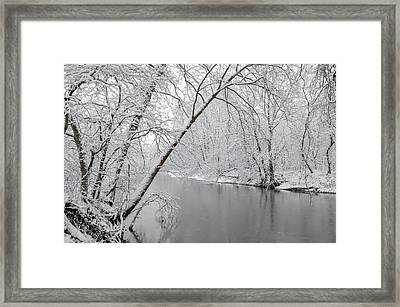 Winter Wonderland Framed Print by Brian Stevens