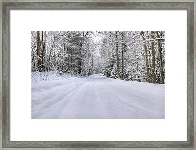 Winter Wonderland Framed Print by Donna Doherty