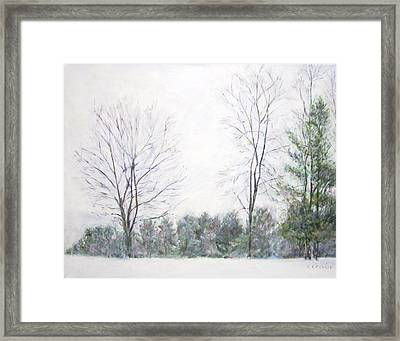 Winter Wonderland Usa Framed Print