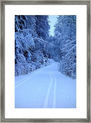 We Are Going Deeper Into The Winter Wonderland Every Day  Framed Print