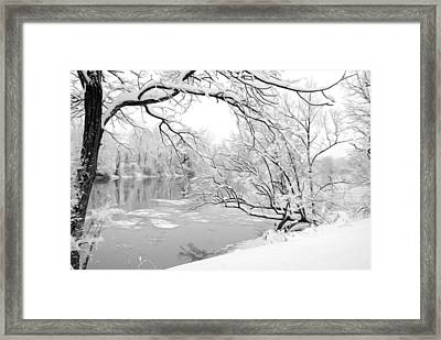Winter Wonderland In Black And White Framed Print