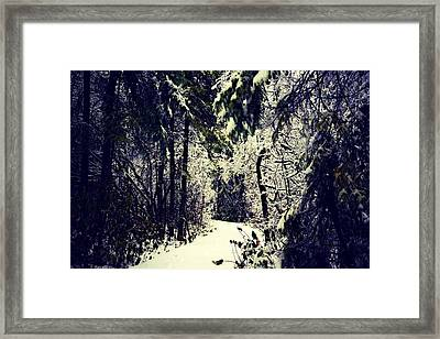 Winter Wonderland Framed Print by Jenn Marie