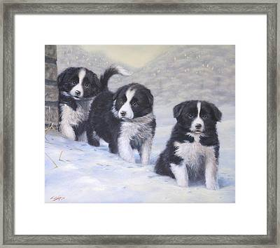 Winter Wonderland Framed Print by John Silver