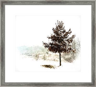 Winter Wonderland  Framed Print by Kerri Farley