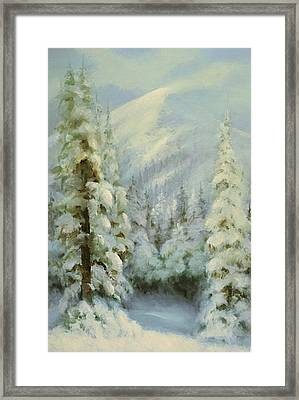 Winter Wonderland Framed Print by Richard Hinger
