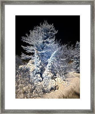 Framed Print featuring the photograph Winter Wonderland by Steve Zimic