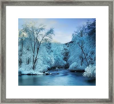 Winter Wonderland Framed Print by Thomas Schoeller