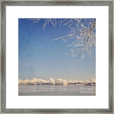 Winter Wonderland With Snowflakes Decoration. Framed Print by Lyn Randle
